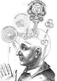 Your Unconscious Brain Can Do Math, Process Language