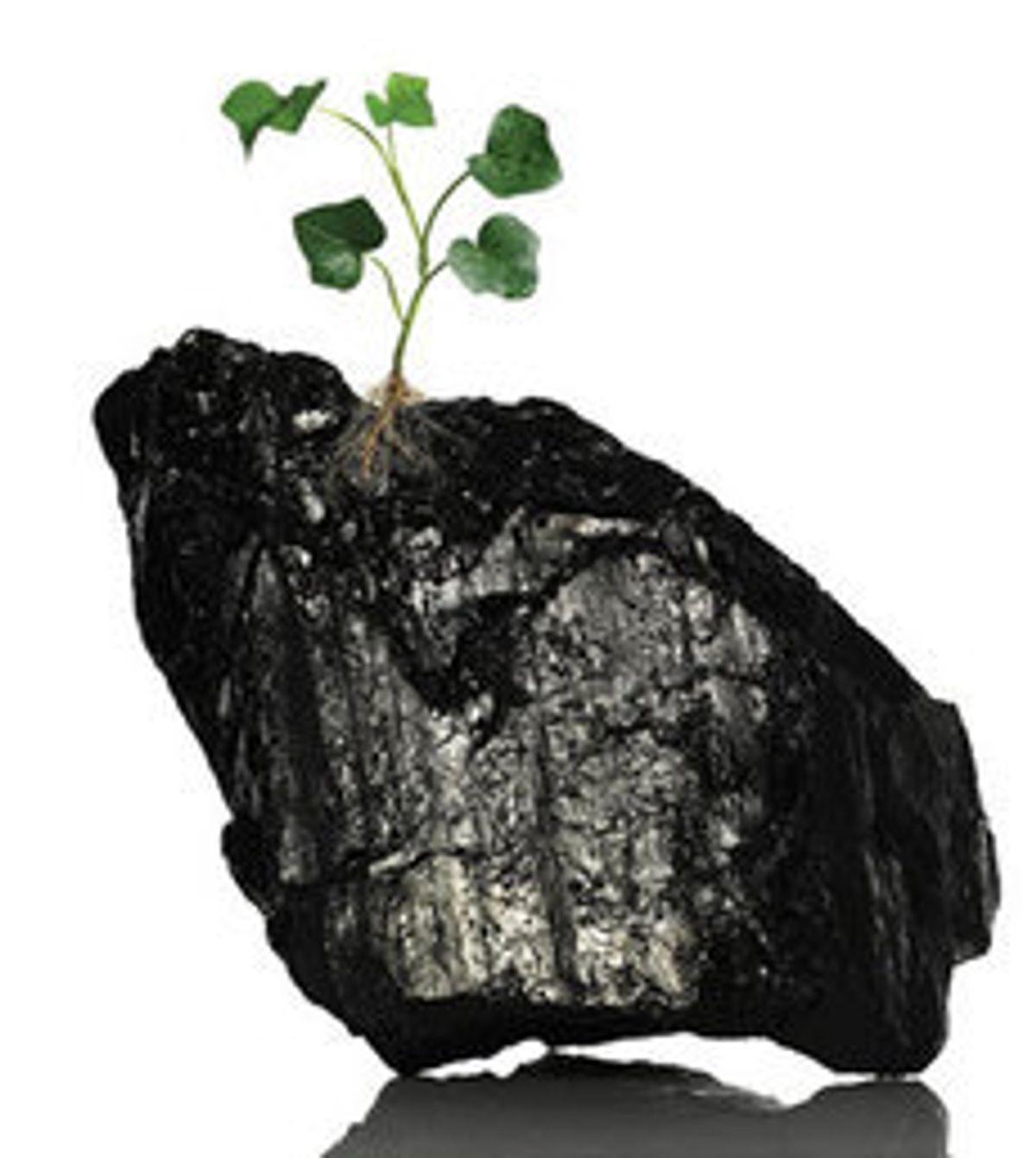 Carbon Capture Is Dead, Long Live Carbon Capture