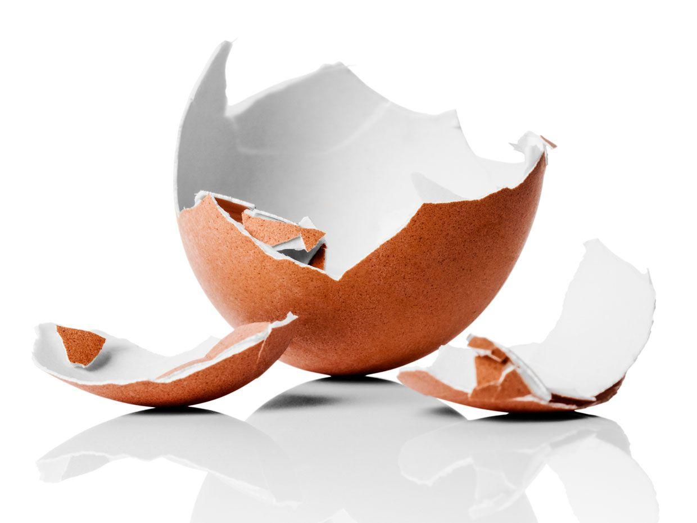 Eggshells for Energy Storage