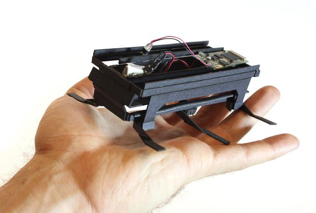 Dash Robotics Developing Indestructible Biomimetic Roachbots for Everyone