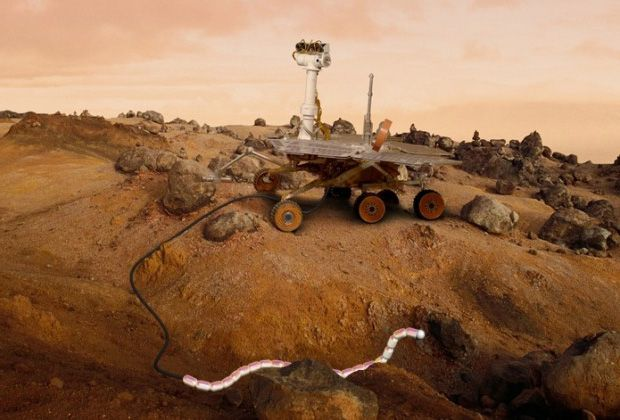 European Space Agency Wants to Send Robot Snakes to Mars