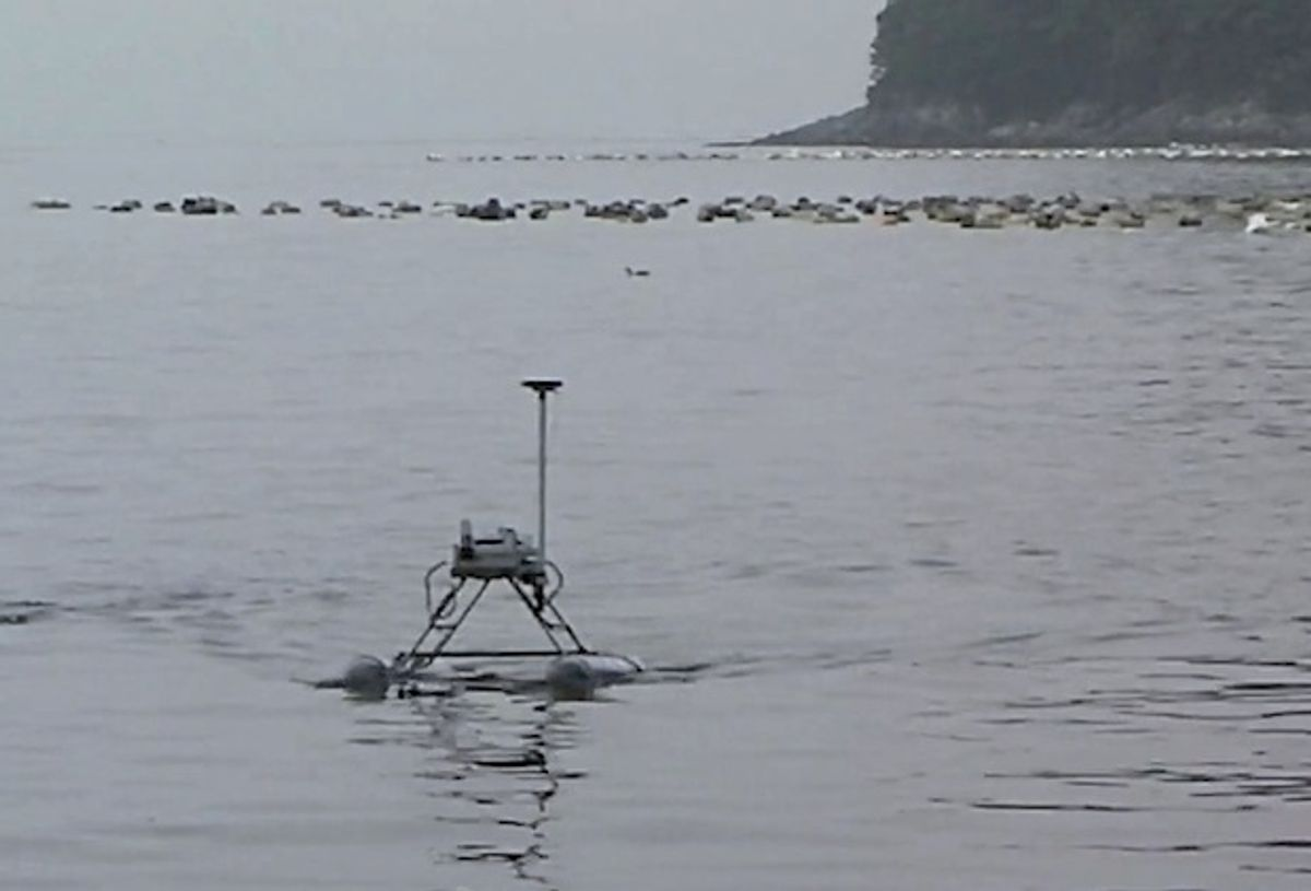 These Robots Will Stop the Jellyfish Invasion