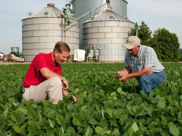 Monsanto Brings Big Data to the Farm