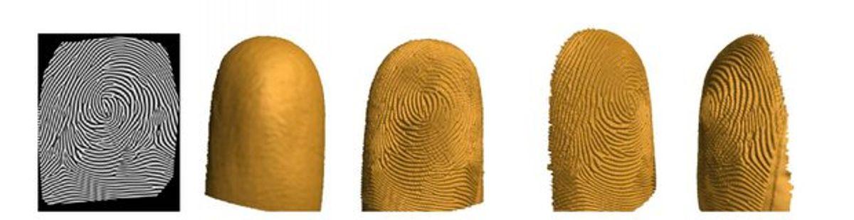 Print 3-D Fingerprints for Better Biometrics