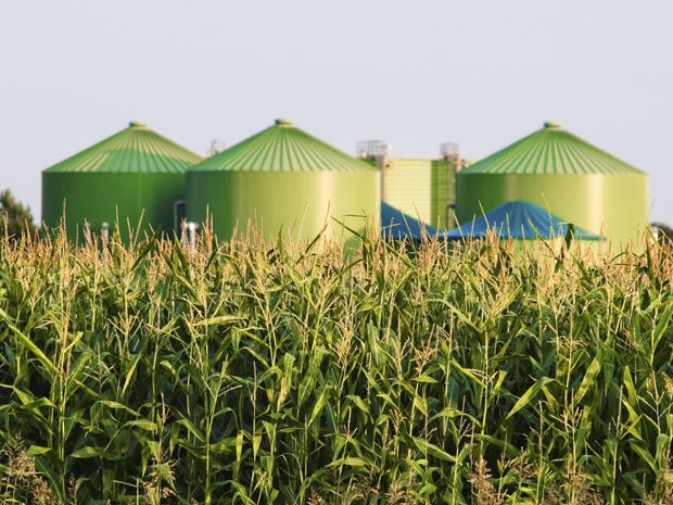 Hoovering Up CO2 with CCS-equipped Biomass Power Plants