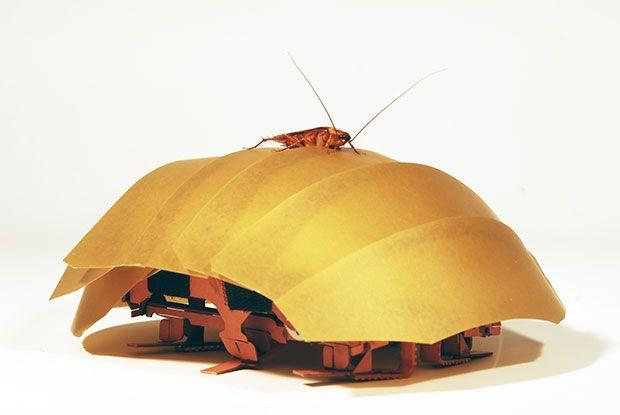 Exoskeleton Makes Robotic Roach Flexibly Squishy