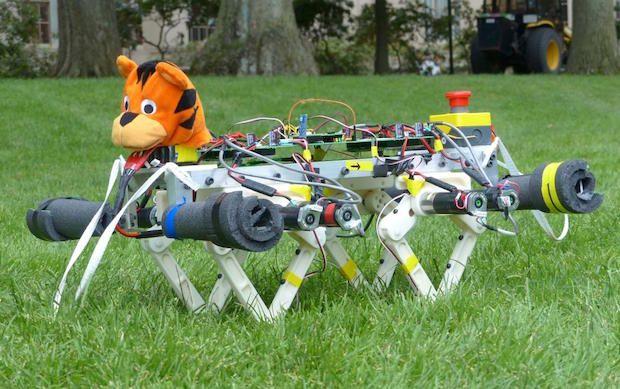 Video Friday: MIT Mini Cheetah, Jibo Sound Localization, and BB-8 Meets Mars Rover