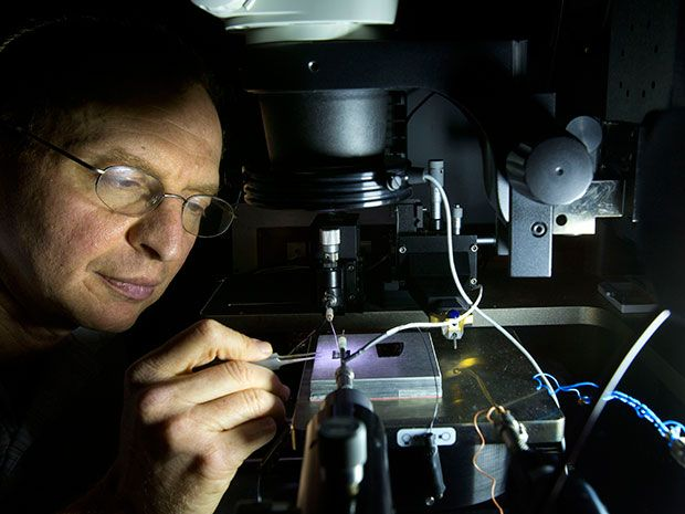 Plasmonics Make Electrochromic Polymers Fast Enough for Video