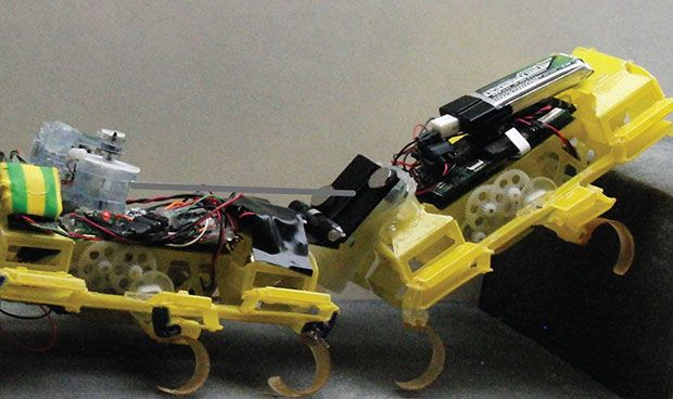 Robot Roaches With Tiny Magnetic Winch Cooperate to Scale Steps