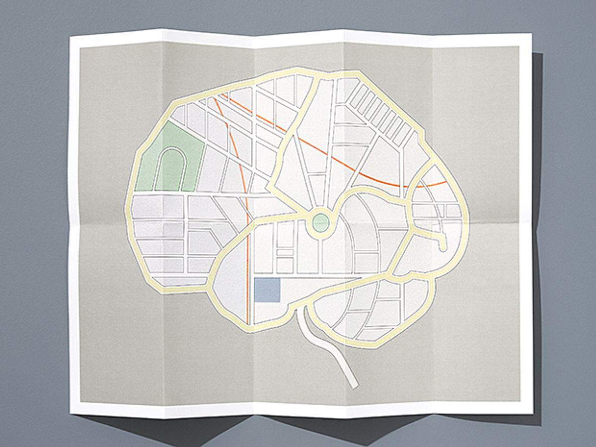 Illustration of brain roadmap