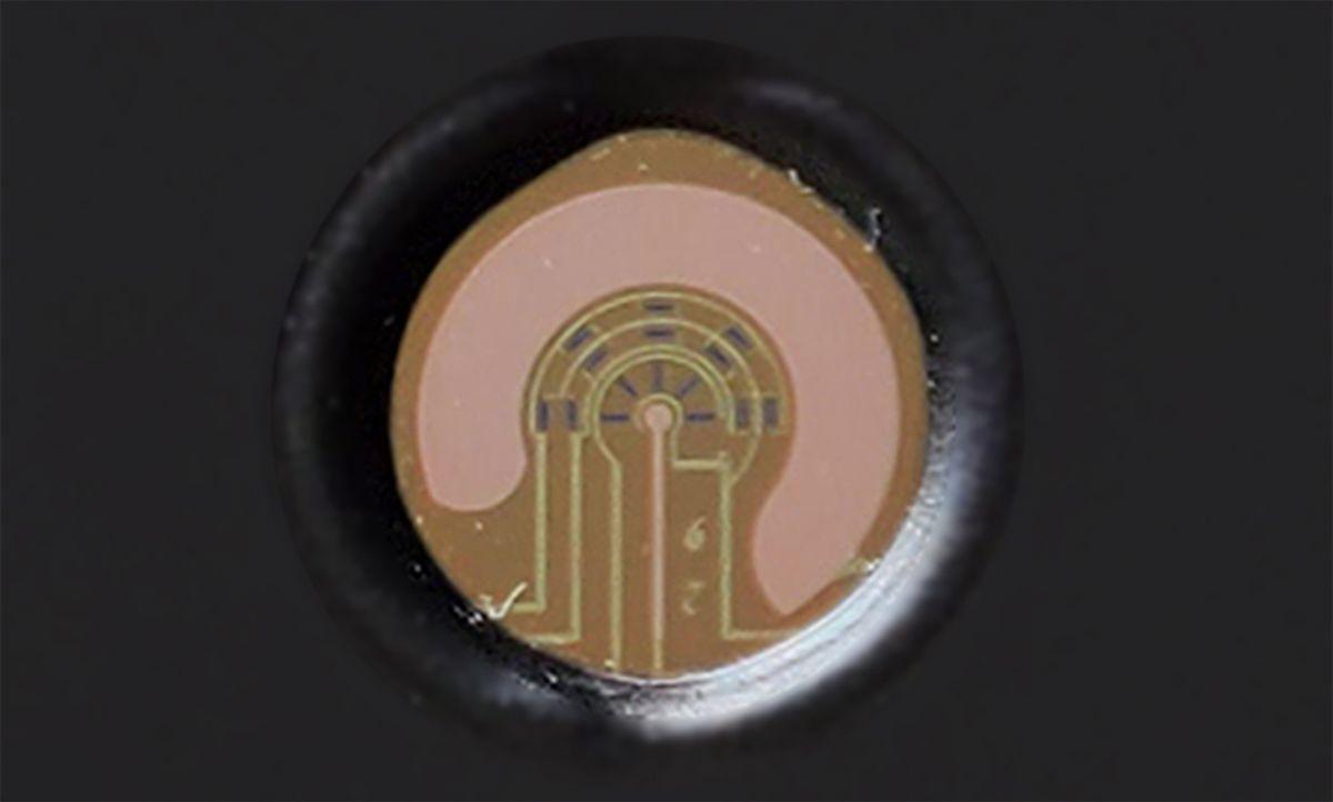 A close up of a sensor.
