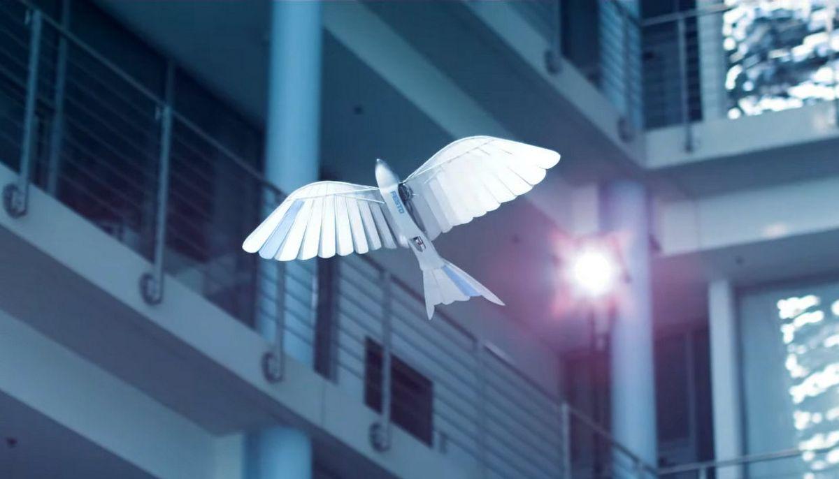 Festo's BionicSwift in flight
