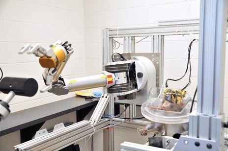Monkey Controls Advanced Robot Using Its Mind