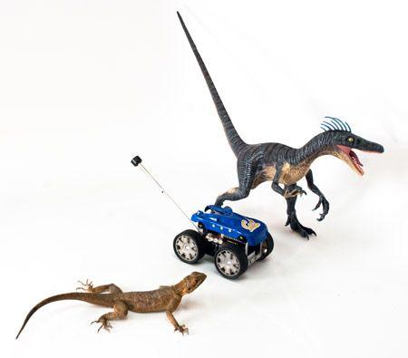 Dinosaur-Like Tails Make Terrestrial Mobile Robots More Agile