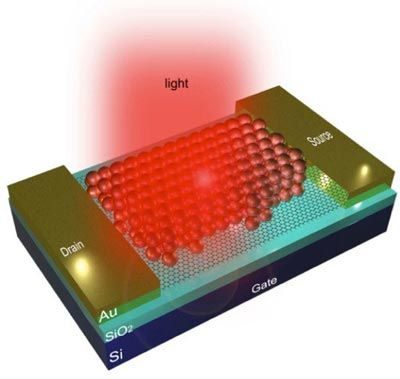Graphene Combined with Quantum Dots Result in Efficient Photodetector