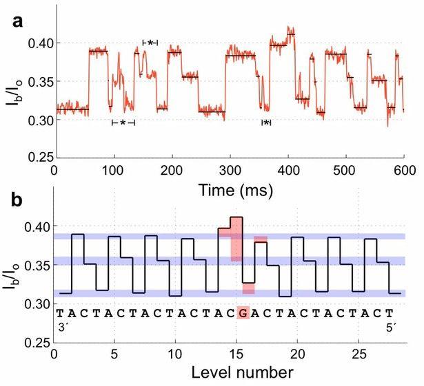 Molecular Motor Coupled to High Sensitivity Nanopore Promises Cheap DNA Sequencing