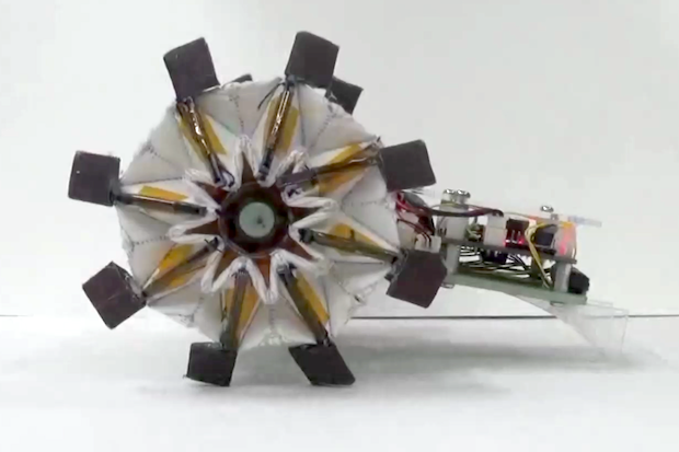 Robots Get Flexible and Torqued Up With Origami Wheels