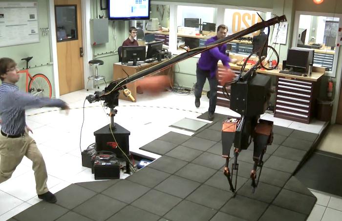ATRIAS Robot Gets Hit By Barrage of Dodgeballs