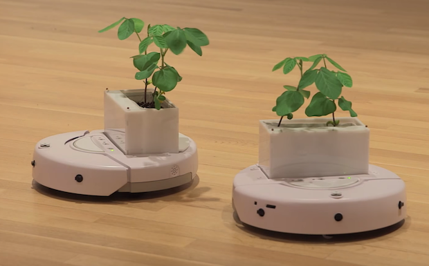 Video Friday: PlantBots, Real Martians, and Drone Comms Jammer