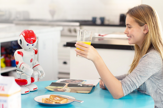 Alpha 2, a Humanoid Robot With Social Skills, Is Now on Indiegogo