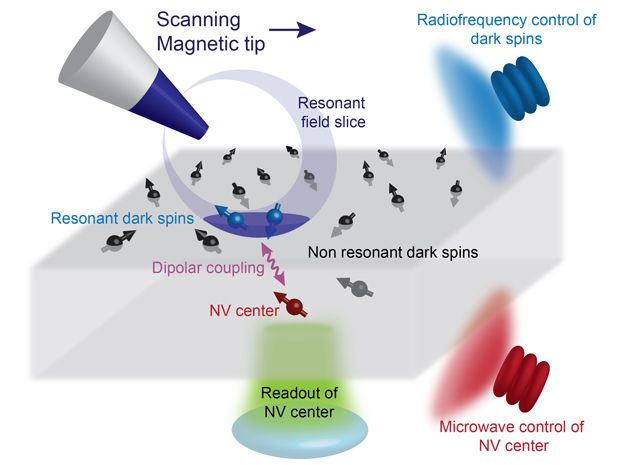 Infographic showing workings of a magnetic resonance imagining (MRI) device.