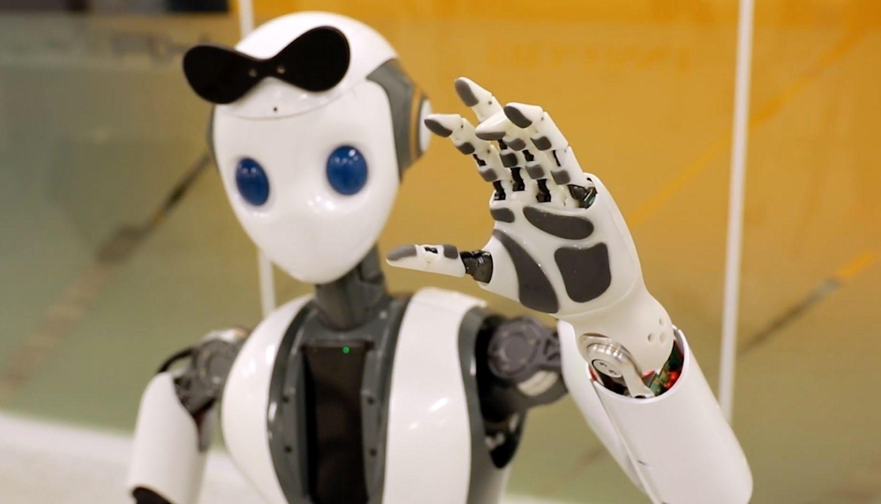 Innfos HR-1 Humanoid Robot