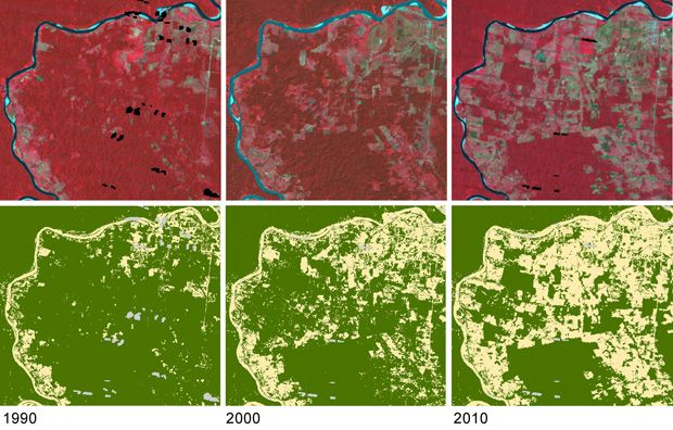 Satellites to Monitor UN Forest Protection Goals