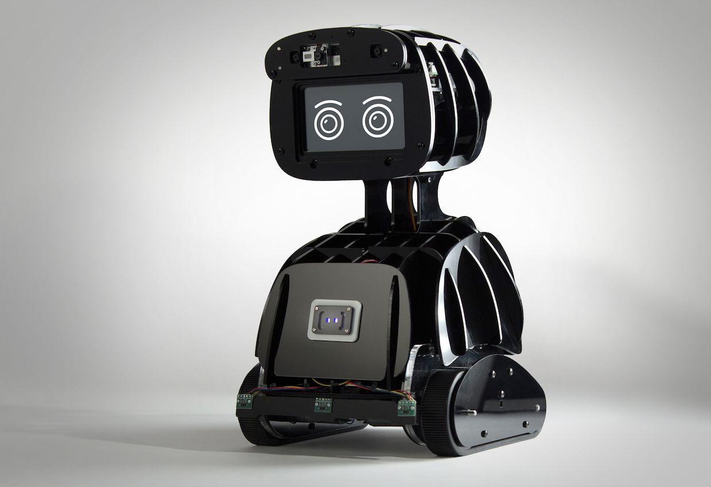 Misty, a programmable robot created by Misty Robotics
