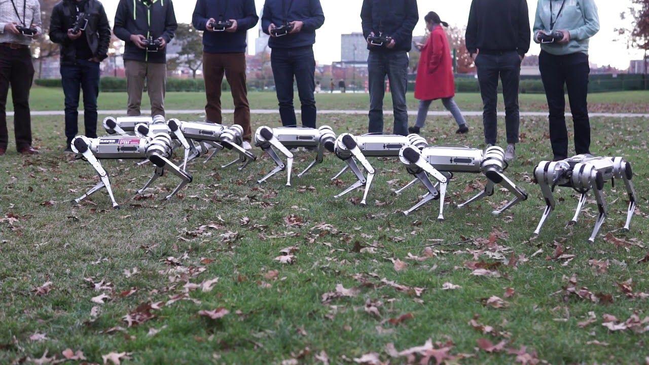 MIT Mini Cheetah robots