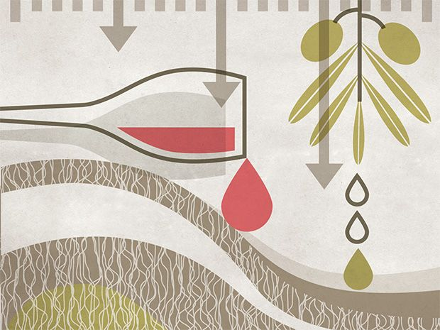 Opening illustration for Numbers Don't Lie opinion column.