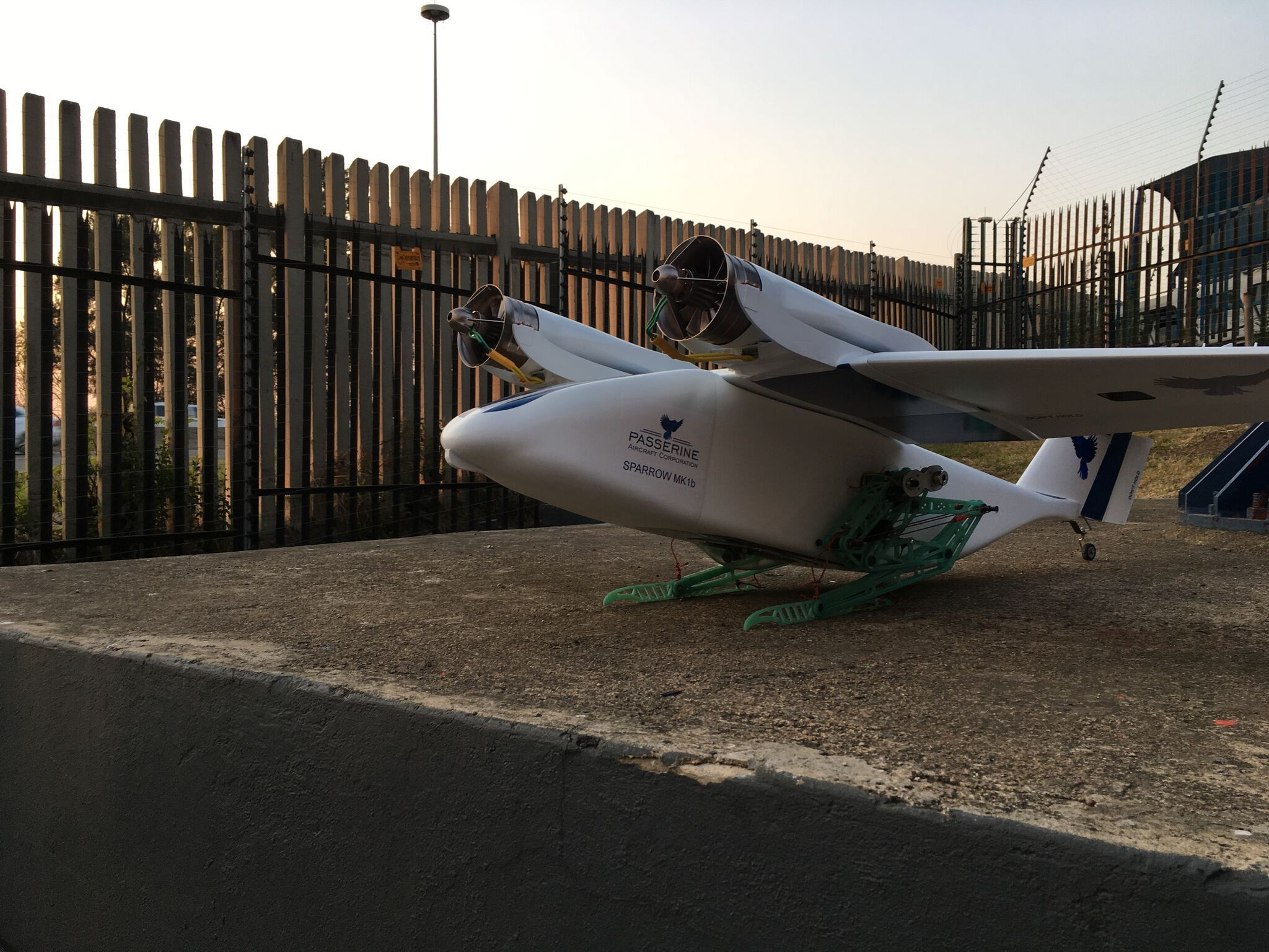 Passerine drone Sparrow