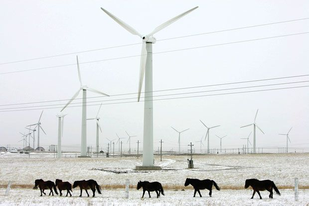 Photo: China Photos/Getty Images