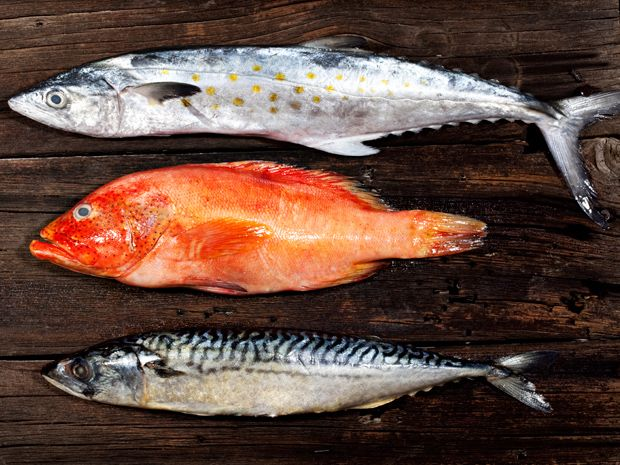 Something's Fishy: New Device Sniffs Out Seafood Fraud