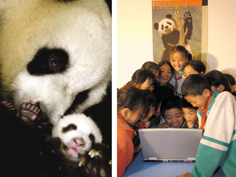 Photo, Left: Xiang Sheren/FeatureChina; Right: K.Feng/Globio
