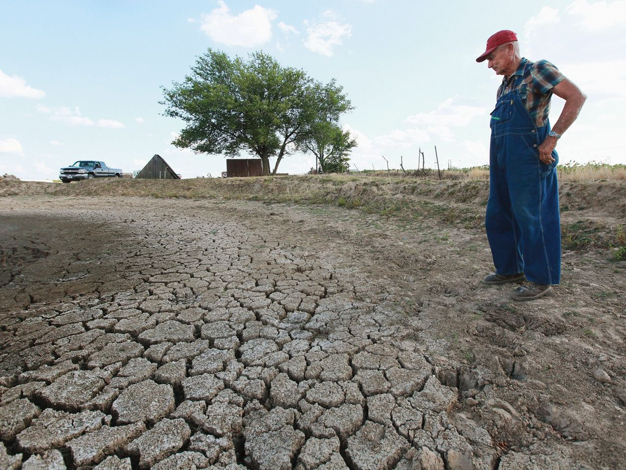 Photo of farmer viewing dry land
