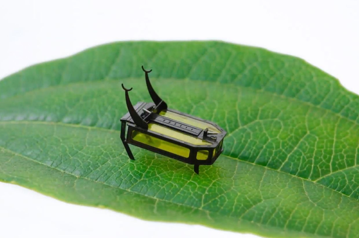 Robotic beetle powered by fuel