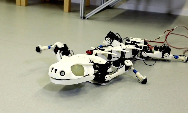 Robotic salamander built at EPFL