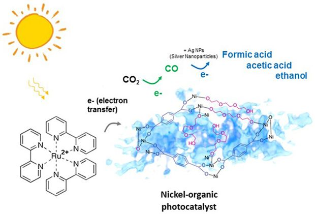 Schematic of a spongy nickel-organic photocatalyst converting carbon dioxide exclusively into carbon monoxide, which can further be converted to high-value liquid fuel through visible light-induced photocatalysis.