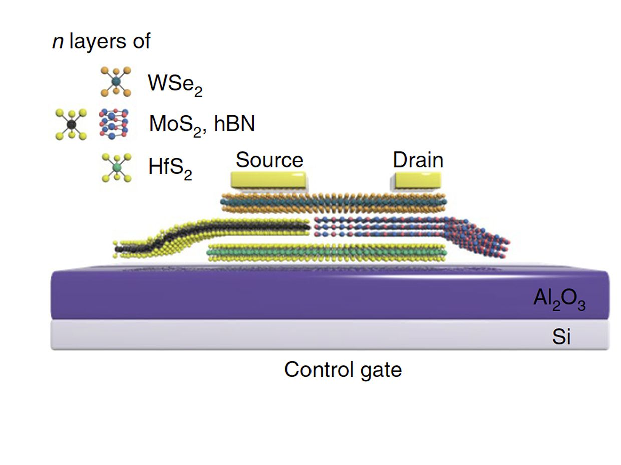 Schematic structure of the 2D SFG memory
