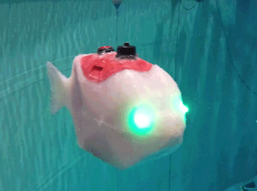 Small white robot shaped like a fish moves back and forth underwater to propel itself forward while its LED eyes blink between blue and green