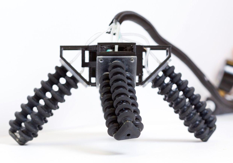 Soft legged robot
