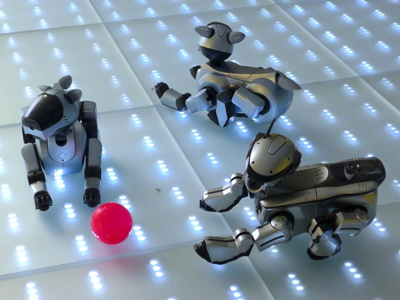 Sony Aibo robot dogs.