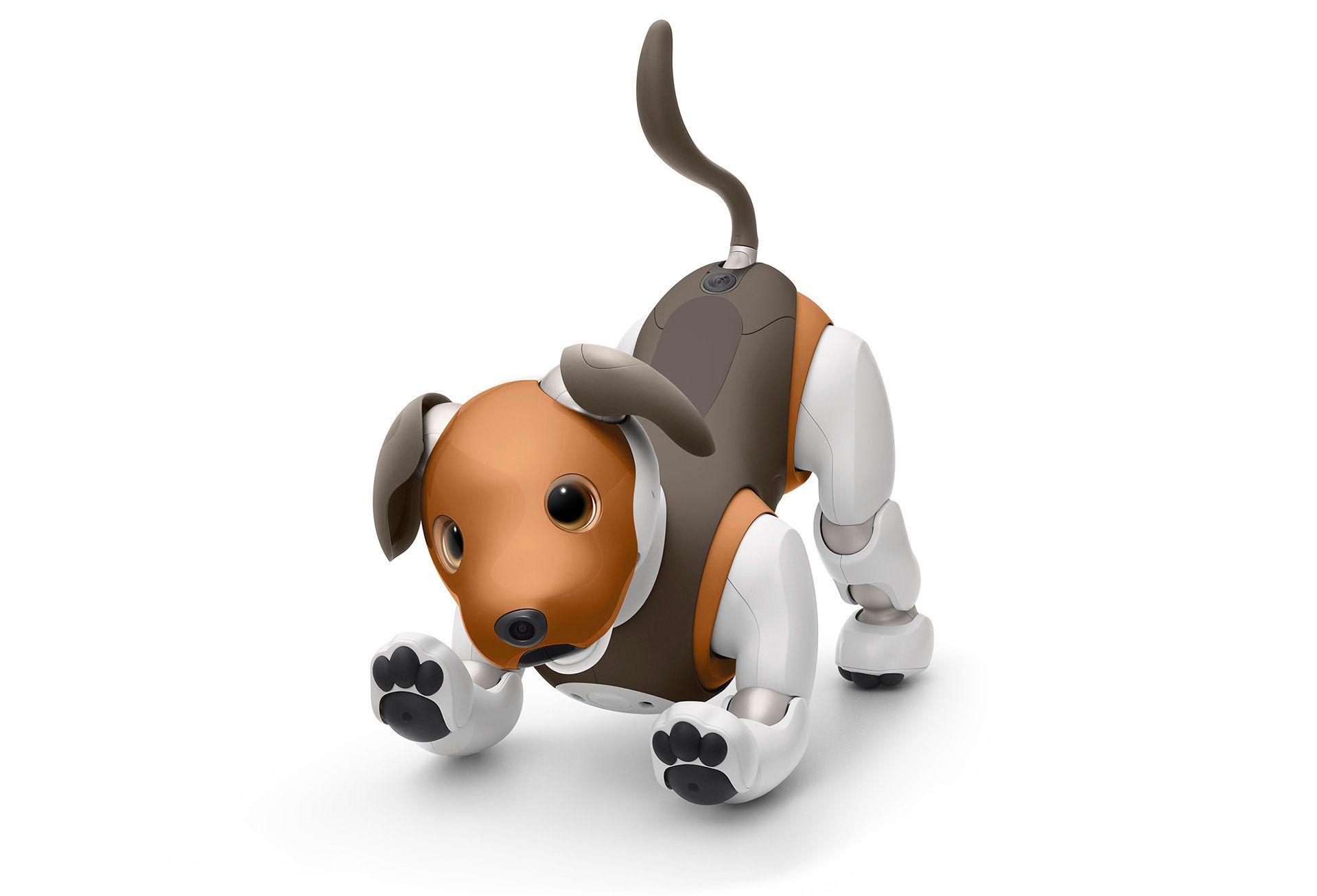 Sony's Aibo robot dog, chocolate edition