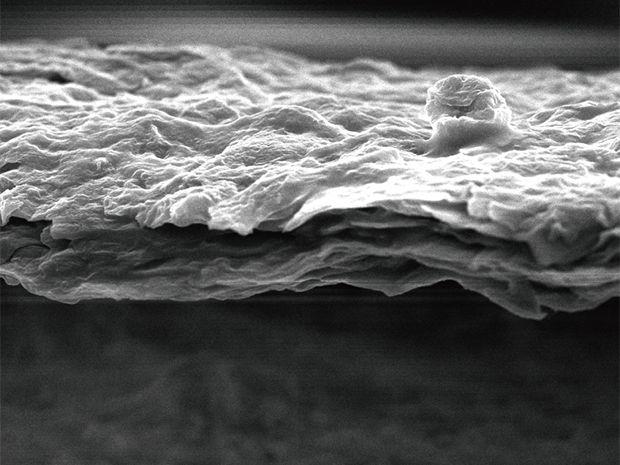 The optical image of a folded graphene oxide film looks like baked filo dough