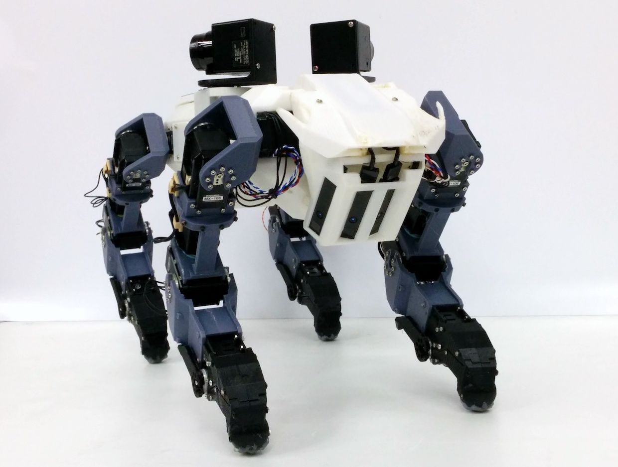 This robot dog can scale ladders