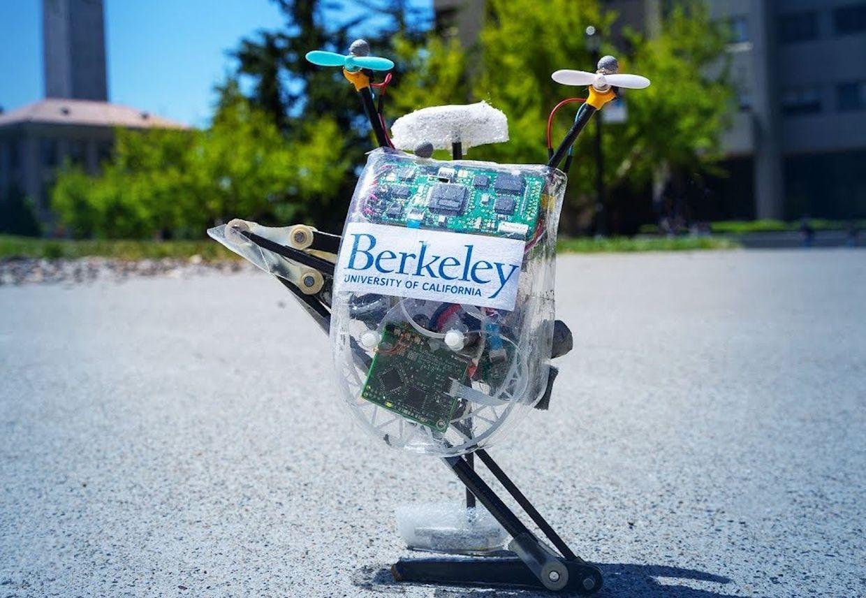 UC Berkeley jumping robot Salto