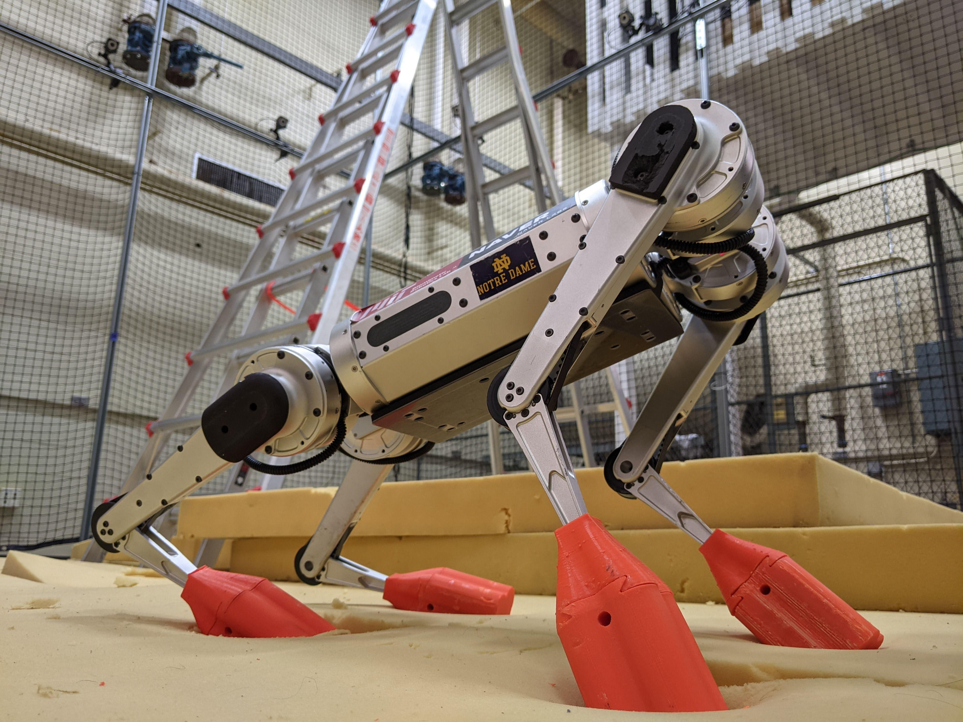 Wide angle close up picture of a silver quadrupedal robot with red 3D printed boots standing on a foam pad with a ladder in the background